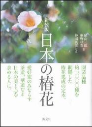 日本の椿花