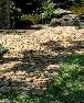 【延段】京都産さざれ石の敷石。あられこぼしで目地の美しさを表現。